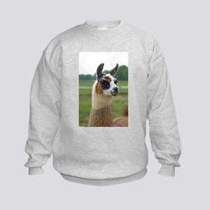 Spotted Llama Kids Sweatshirt