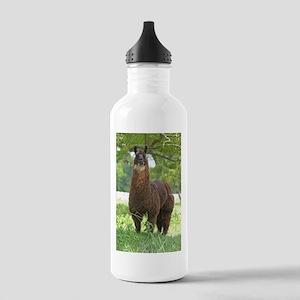 Black Llama Stainless Water Bottle 1.0L