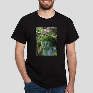 River at Xcaret Black T-Shirt