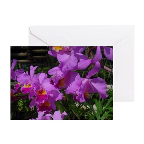 Purple Orchid Greeting Cards (Pk of 10)