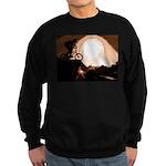 WillieBMX The Warm Earth Sweatshirt (dark)