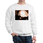 WillieBMX The Warm Earth Sweatshirt