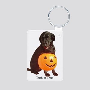 trick or treat Aluminum Photo Keychain