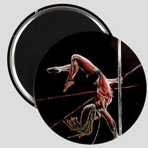 pole_dancer_ Magnets