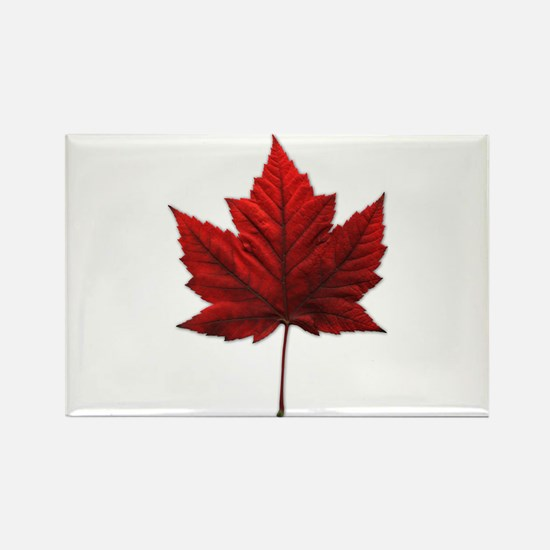 Canada Maple Leaf Magnets