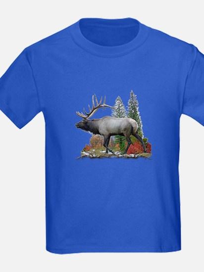 Bull Elk T