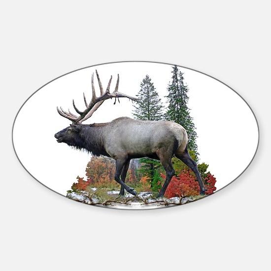 Bull Elk Sticker (Oval)