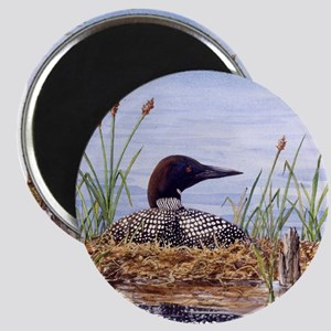 Nesting Loons Magnet