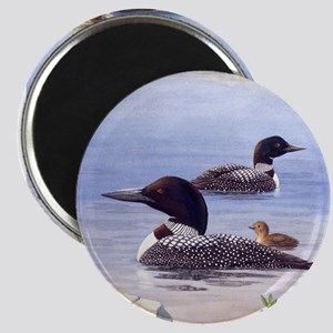 Loons with Chick Magnet