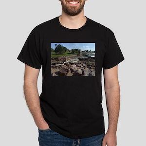 Falls Park 16 Dark T-Shirt