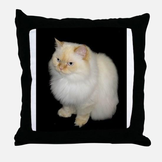 Zeus the White Himalayan Cat  Throw Pillow