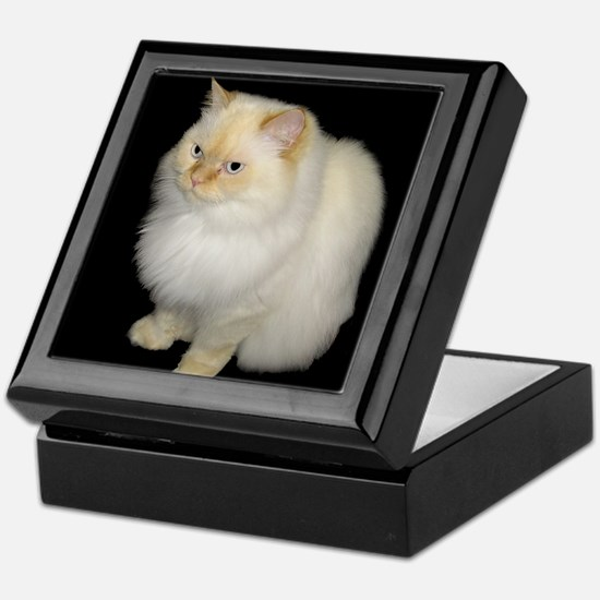 Zeus the White Himalayan Cat Keepsake Box
