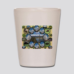 Yellowstone Park Shot Glass