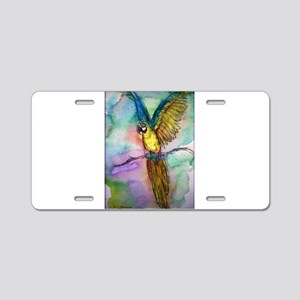 parrot, Colorful, Macaw, Aluminum License Plate