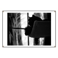 Kitty in the Window Banner