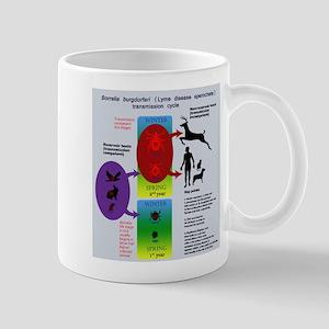 Lyme disease transmission poster Mug