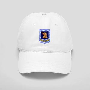 96th Bomb Wing Cap