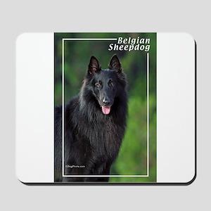 Belgian Sheepdog-1 Mousepad