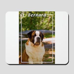 St Bernard-4 Mousepad