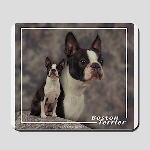 Boston Terrier-1 Mousepad
