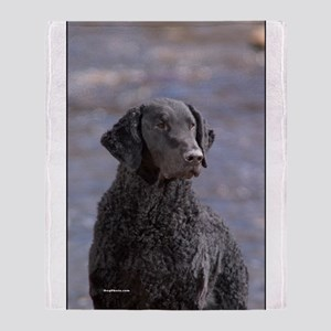 Curly Coated Retriever-1 Throw Blanket