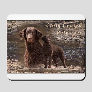 Curly Coated Retriever-3 Mousepad