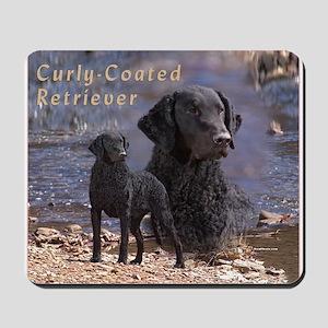 Curly Coated Retriever-2 Mousepad
