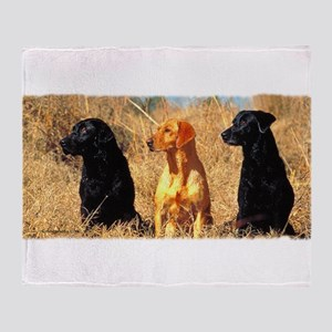 labrador-4 Throw Blanket