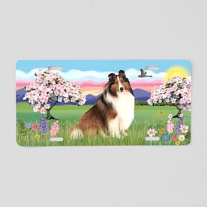 Blossoms-Sheltland Sheepdog Aluminum License Plate