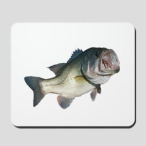 Bass Fisherman Mousepad