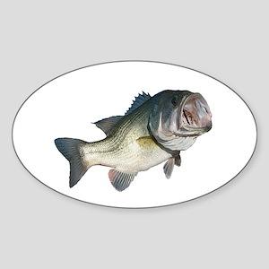 Bass Fisherman Sticker (Oval)