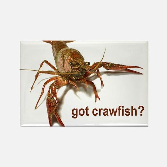 got crawfish? Rectangle Magnet