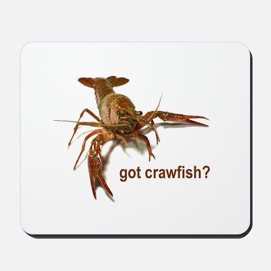 got crawfish? Mousepad