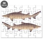 Sand Tiger Shark Puzzle