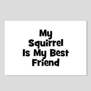 My Squirrel Is My Best Friend Postcards (Package o