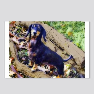 Darling Doxie Postcards (Package of 8)
