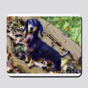 Darling Doxie Mousepad
