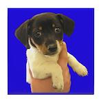 Little Puppy Tile Coaster