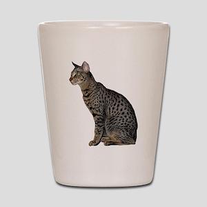 Savannah Cat Shot Glass