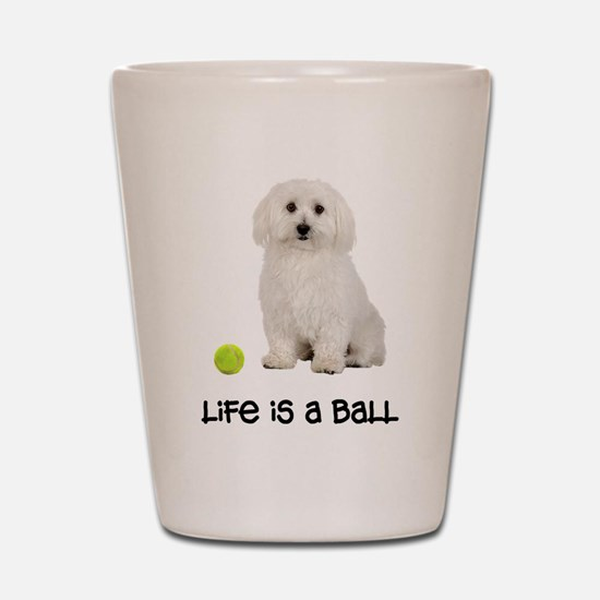 Bichon Frise Life Shot Glass