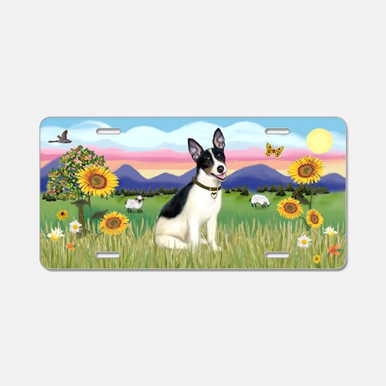 Summer Field-Rat Terrier Aluminum License Plate