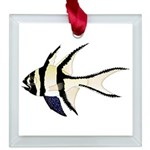 Banggai cardinalfish Square Glass Ornament