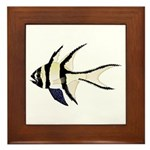 Banggai cardinalfish Framed Tile
