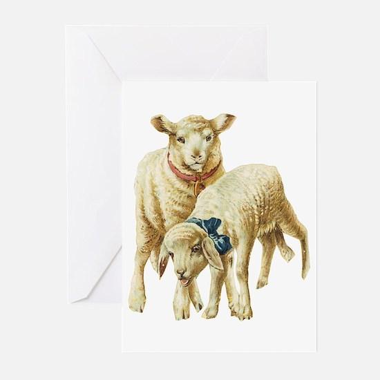 Lamb drawing Greeting Cards (Pk of 10)