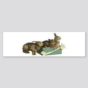 Three Bunnys Bumper Sticker