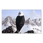 Eminence - Eagle Rectangle Sticker