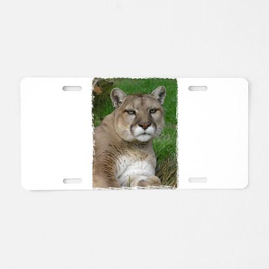 Unique Mountain lion Aluminum License Plate