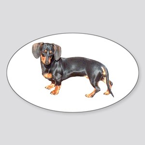 Lily Baby Dachshund Dog Oval Sticker