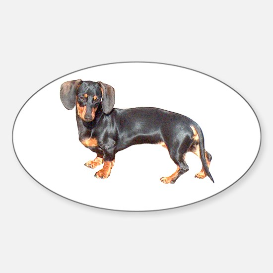 Lily Baby Dachshund Dog Oval Decal
