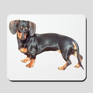 Lily Baby Dachshund Dog Mousepad